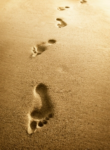 Pe urmele inaintasilor nostri